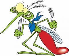 moustique 3